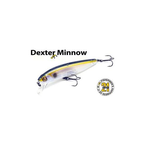 Pontoon 21 Dexter Minnow...